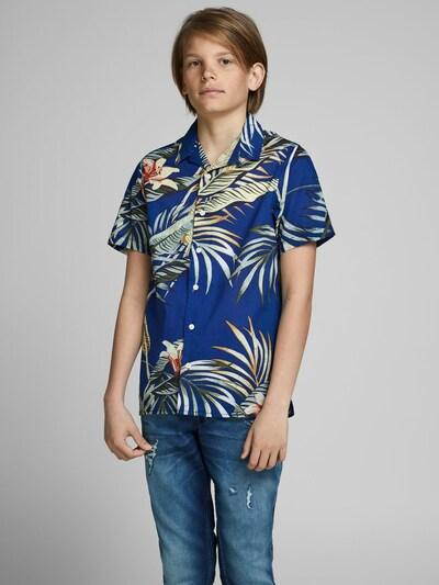 Jack & Jones Junior Kurzarmhemd in blau / mischfarben: Frontalansicht