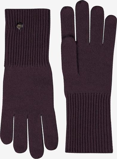 CODELLO Handschuhe in aubergine, Produktansicht