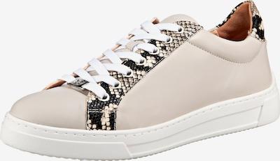 Schoenen voor Dames UNISA Sneakers laag in Beige / Zwart / Wit