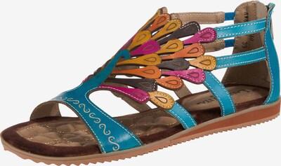 Laura Vita Sandalen in blau / mischfarben, Produktansicht
