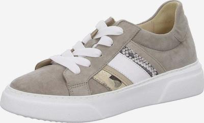 GABOR Sneakers laag in de kleur Greige, Productweergave