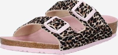 BIRKENSTOCK Schuhe 'Arizona' in braun / hellbraun / schwarz: Frontalansicht