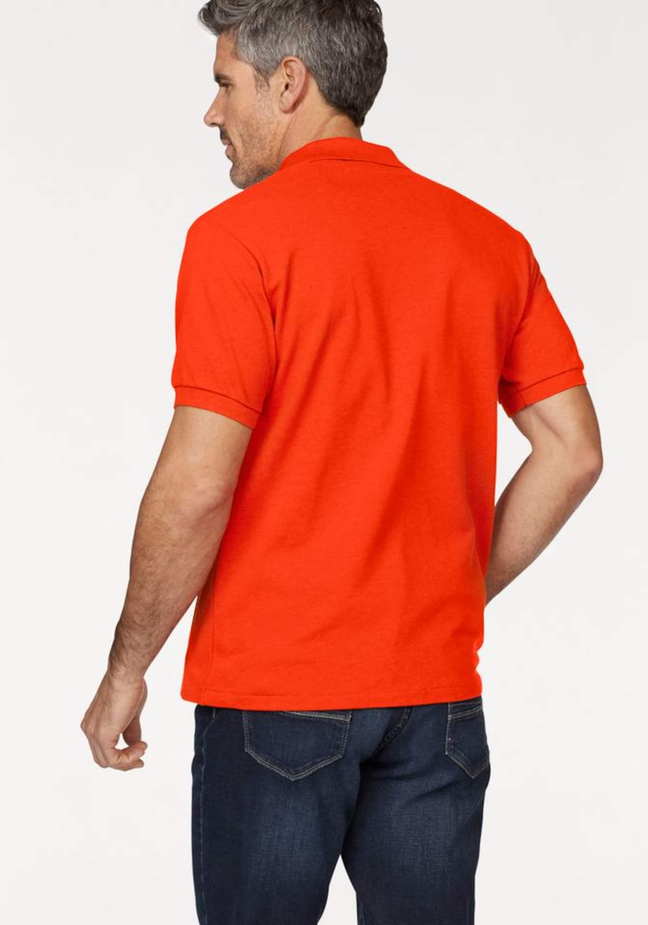 LACOSTE Poloshirt Niedrig Versandkosten Günstig Online Spielraum Erhalten Zu Kaufen Ebay Verkauf Online Günstig Kaufen Sast Kaufen Authentische Online aREKQtjP