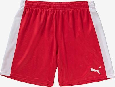 PUMA Shorts in rot / weiß, Produktansicht