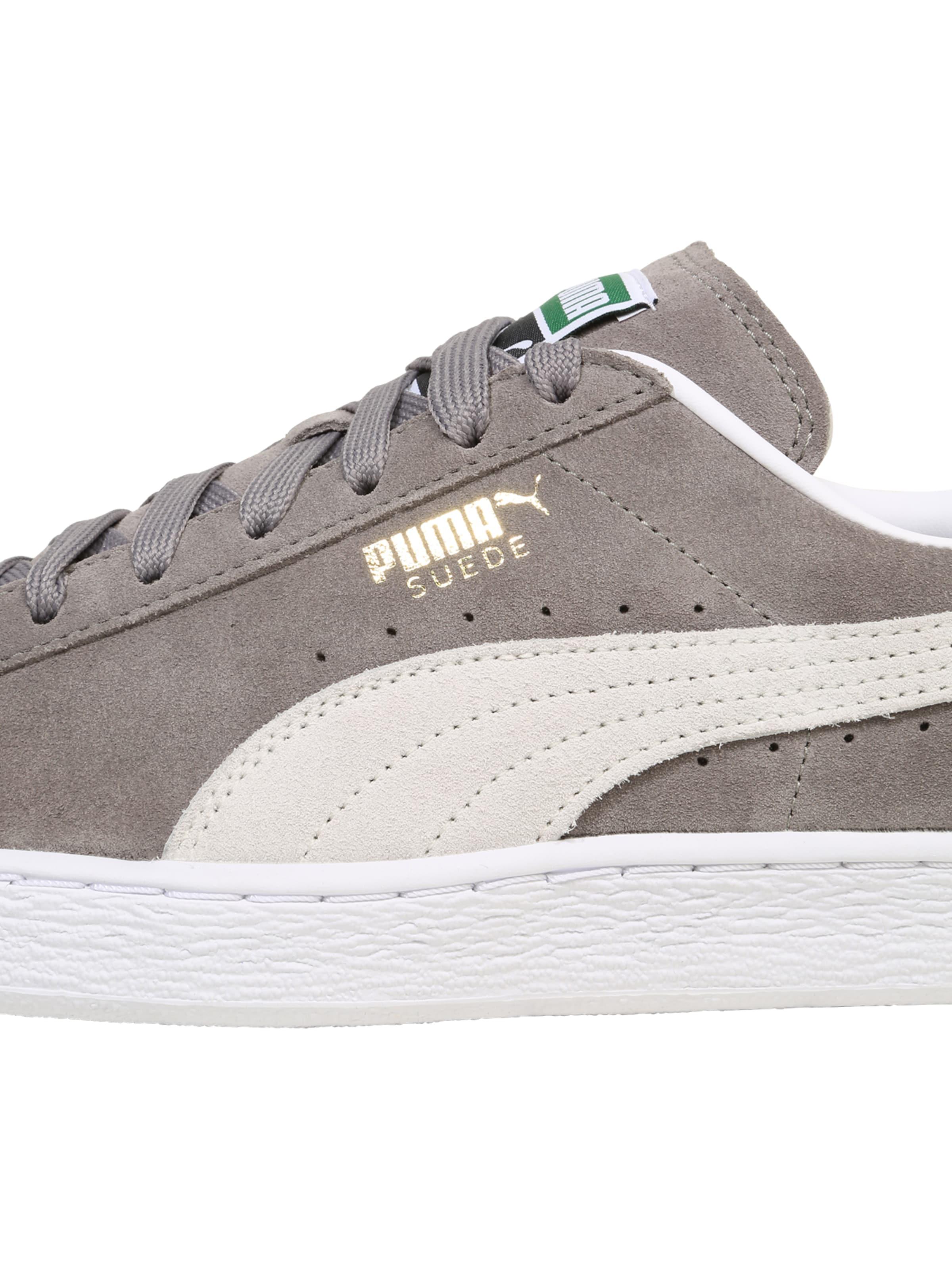 Classic' Puma In GreigeWeiß Sneaker 'suede f6ybY7gvI