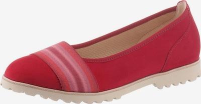 GABOR Ballerina in pink / rot, Produktansicht