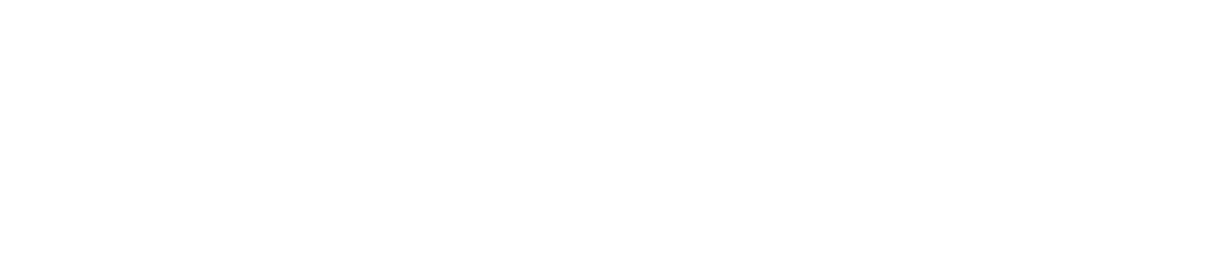 b.young Logo