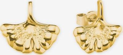 AMOR Ohrstecker 'Ginkgo' in goldgelb, Produktansicht