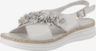 ANDREA CONTI Sandaletten in ecru / naturweiß, Produktansicht