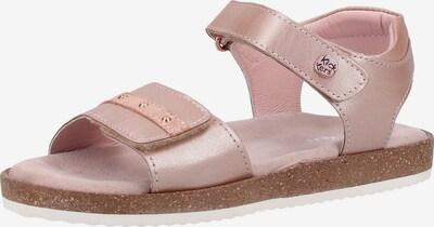KICKERS Sandalen in rosé: Frontalansicht