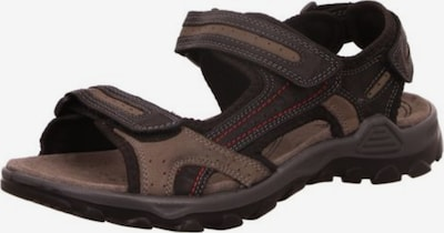 ROHDE Hiking Sandals in Brown / Black, Item view