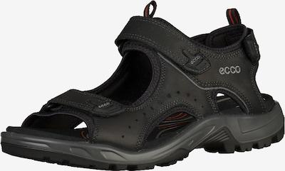 ECCO Sandalen in de kleur Zwart, Productweergave