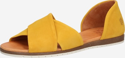 Sandale 'SS20-CHIUSI' Apple of Eden pe galben, Vizualizare produs