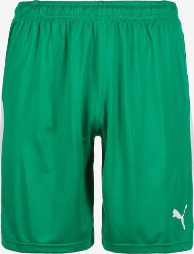 PUMA Short 'Liga' in grün / weiß, Produktansicht