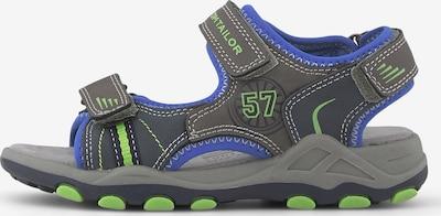 TOM TAILOR Sandalen in blau / grau, Produktansicht