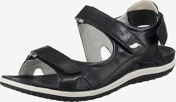 juoda GEOX Sportinio tipo sandalai