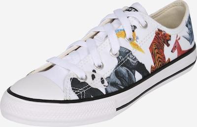 CONVERSE Sneaker  'Ctas - Ox' in mischfarben, Produktansicht
