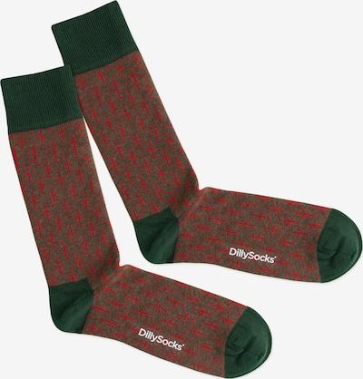 DillySocks Chaussettes 'Red Lining' en vert / rouge, Vue avec produit