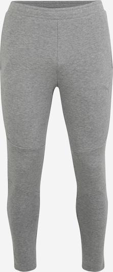 PUMA Sporthose 'Evostripe' in hellgrau, Produktansicht