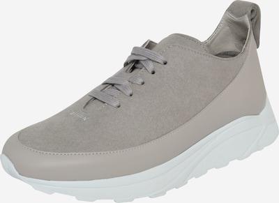 Sneaker low 'Ash' Ekn pe gri, Vizualizare produs