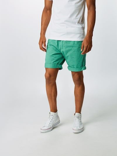 Petrol Industries Shorts in jade / tanne, Modelansicht