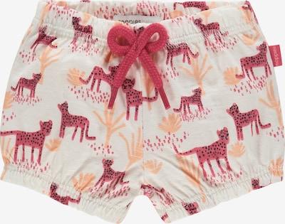Noppies Shorts 'Cranston' in hummer / pastellorange / schwarz / weiß, Produktansicht