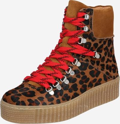 Shoe The Bear Gležnarji z vezalkami 'AGDA LEO' | rjava / temno rjava barva, Prikaz izdelka