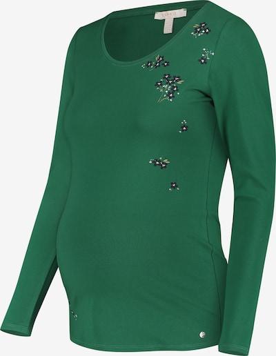 Esprit Maternity Shirt in de kleur Groen: Vooraanzicht