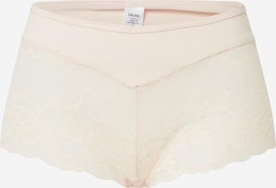 CALIDA Panty in pfirsich, Produktansicht