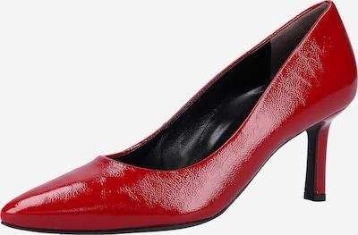 Paul Green Pumps in de kleur Rood: Vooraanzicht