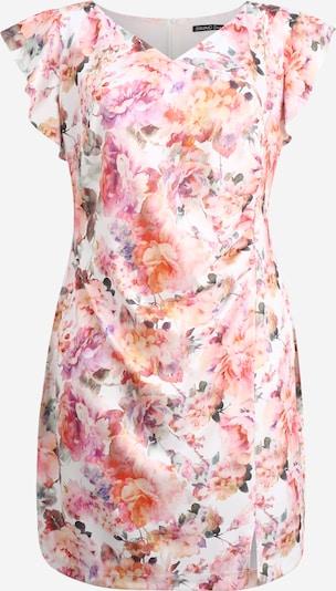 SWING Curve Sukienka etui w kolorze kremowy / różowy pudrowym, Podgląd produktu