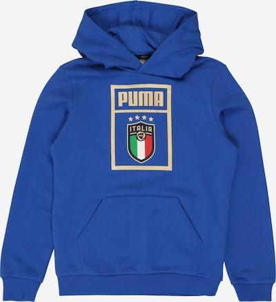 kék PUMA Sport szabadidős felsők 'FIGC PUMA DNA Hoody Jr', Termék nézet