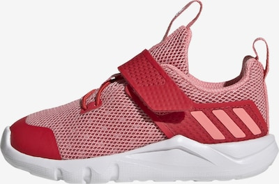ADIDAS PERFORMANCE Sportschuh in pink / rot: Frontalansicht