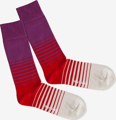 Kojinės 'Heat Up' iš DillySocks , spalva - smėlio / purpurinė / raudona, Prekių apžvalga