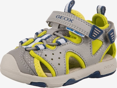 GEOX Sandale in hellgrau / limette, Produktansicht