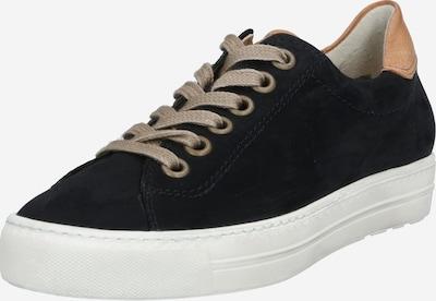 Paul Green Sneaker in kobaltblau / braun, Produktansicht