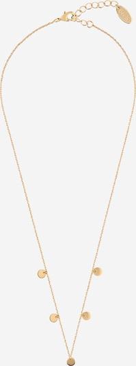 Orelia Chaîne 'Neckwear' en or, Vue avec produit