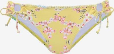 SUNSEEKER Bikini biksītes 'Ditsy' pieejami dzeltens / jauktu krāsu, Preces skats