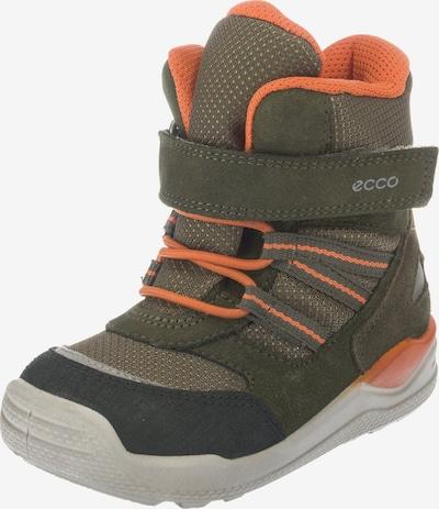 ECCO Schuh 'Urban Mini' in grün, Produktansicht