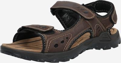 TOM TAILOR Sandały w kolorze brązowy / czarnym, Podgląd produktu