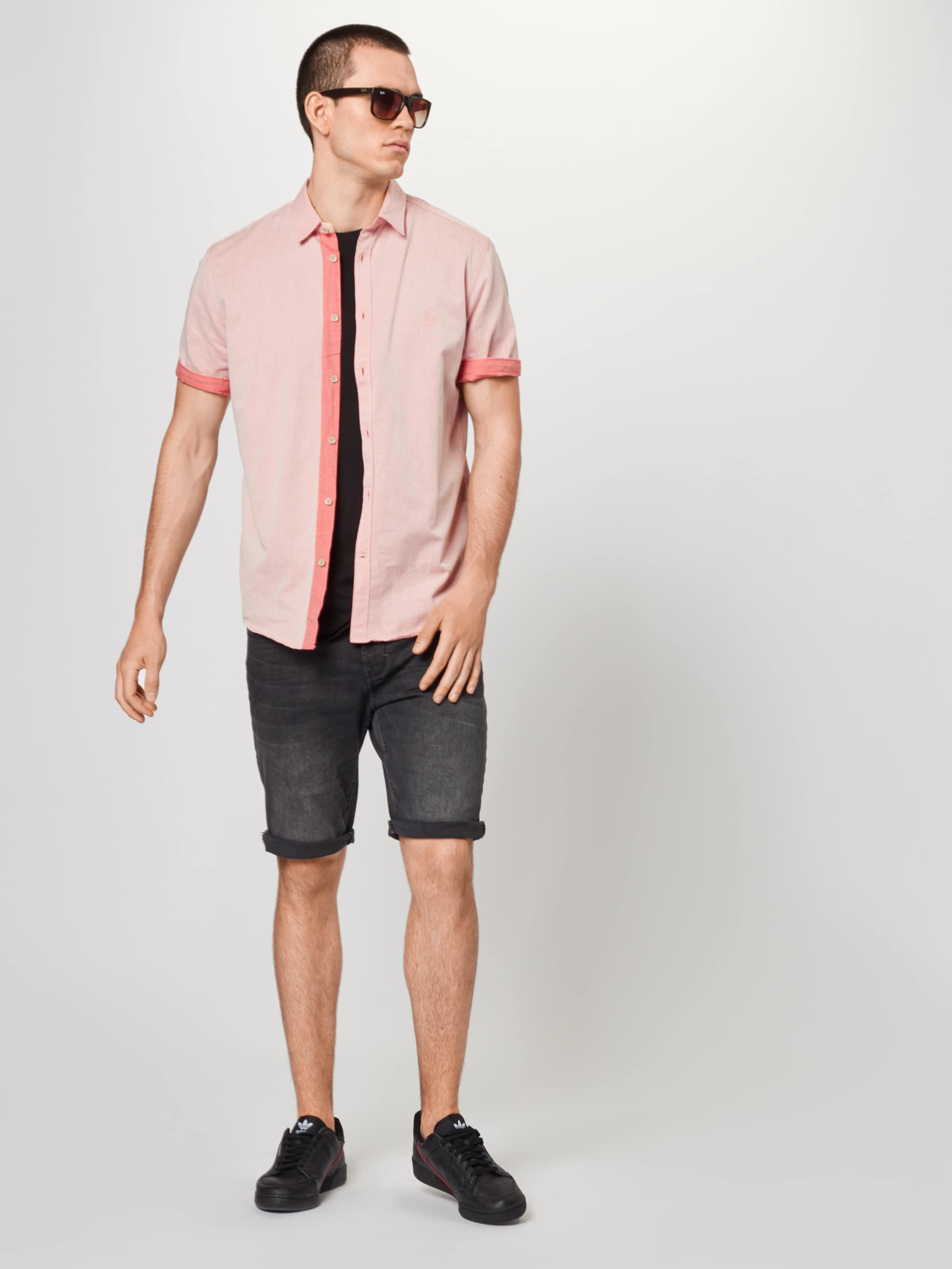 Tailor Tailor Rosa In Rosa Tom In Tom Hemd Hemd jLcS3Aq54R