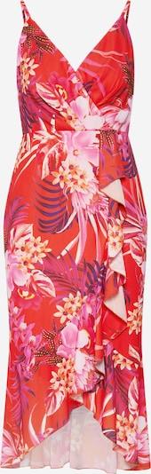 Lipsy Лятна рокла 'CORAL TIGERLILY' в пъстро / светлочервено, Преглед на продукта
