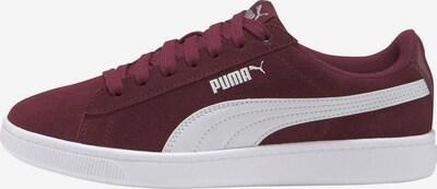 PUMA Sneaker in bordeaux: Frontalansicht
