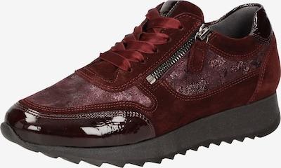 SIOUX Sneaker ' Oseka-701-J ' in weinrot, Produktansicht