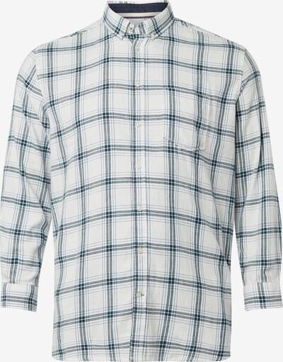 TOM TAILOR Men Plus Hemd in blau / weiß, Produktansicht