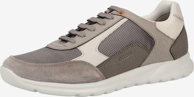GEOX Sneakers laag in de kleur Lichtgrijs / Donkergrijs, Productweergave