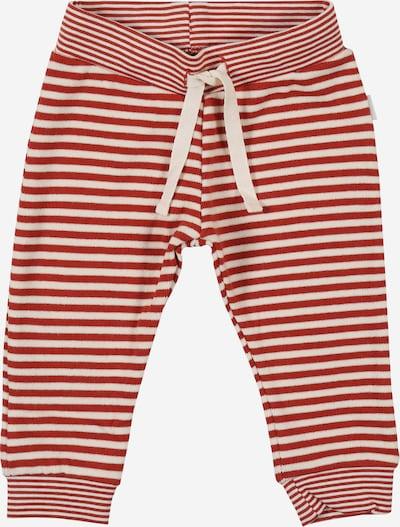 Noppies Hose 'Ahidud' in rot / weiß, Produktansicht