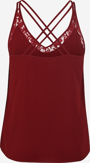 ABOUT YOU Curvy Top 'Alina' in rot: Rückansicht
