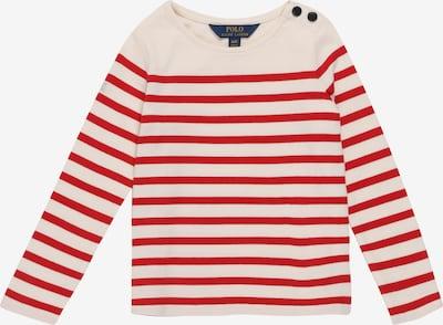 POLO RALPH LAUREN Shirt in de kleur Rood / Wit, Productweergave
