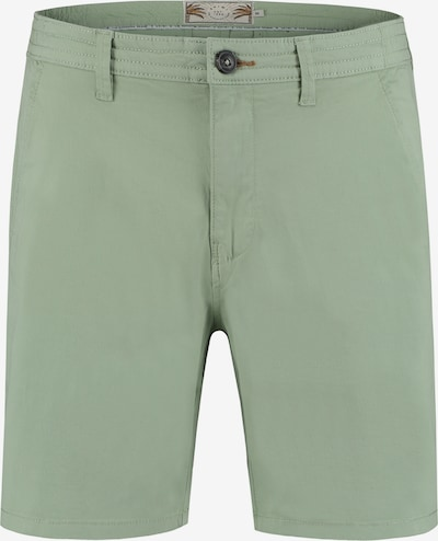 Shiwi Chino in de kleur Groen, Productweergave